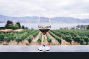 ワイン 結婚式 ウエディング イタリア プロセッコ 赤ワイン ワイナリー